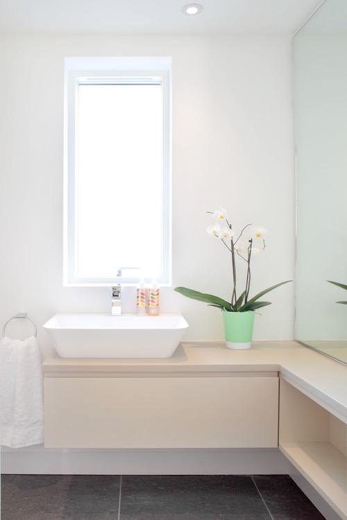 Растения, подходящие для ванной. Орхидеи