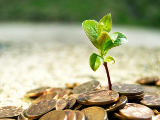 Выгодно ли вкладывать деньги в землю?