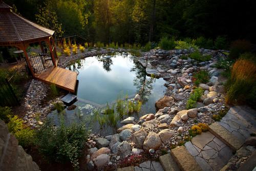 Природный бассейн на даче