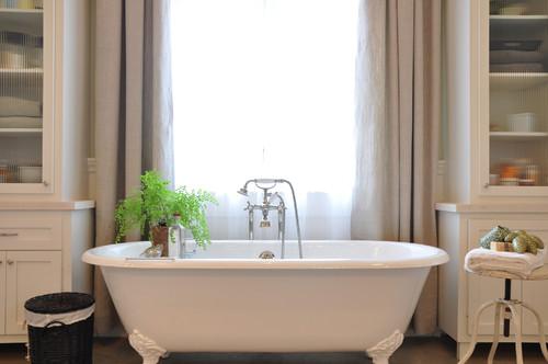 Растения, подходящие для ванной. Папоротники