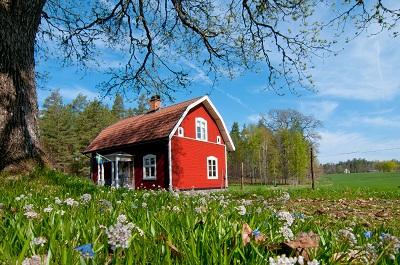 Как оформить землю в аренду?