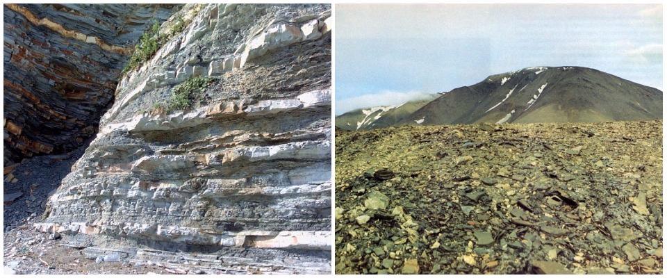 скальная обломочная почва