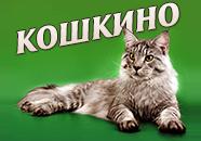 КОШКИНО