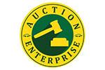 Автосалон: AuctionEnterprise