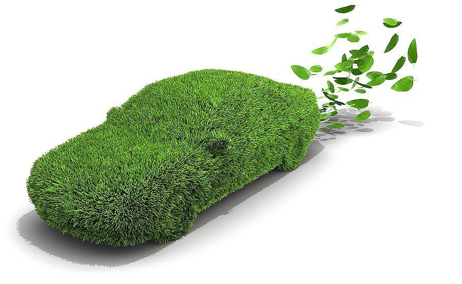 Экология - что может быть важнее в масштабах планеты?