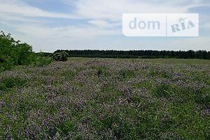 Купить землю под застройку в Днепропетровской области