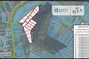Куплю земельный участок в Берегове без посредников