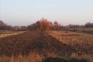 Куплю земельный участок в НовыеСанжарах без посредников