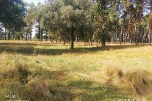 Куплю земельный участок в Решетиловке без посредников