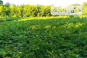 Продается земельный участок 50 соток в Хмельницкой области