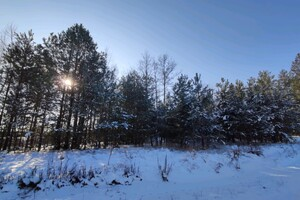 Продається земельна ділянка 80 соток у Київській області