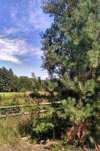 Продается земельный участок 80 соток в Киевской области