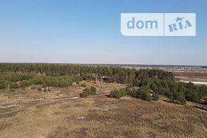 Продаж землі сільськогосподарського призначення, Київська, Ірпінь, р‑н.Гостомель