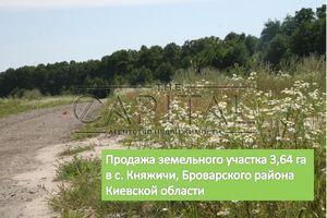 Продається земельна ділянка 364 соток у Київській області