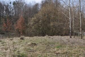 Продается земельный участок 41 соток в Житомирской области