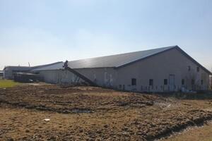 Продаж виробничого приміщення, Запоріжжя, c.Відрадне, Свитанок