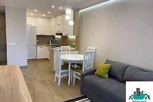 Сдается в аренду 1-комнатная квартира 44.4 кв. м в Львове