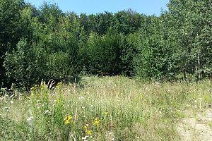Продается земельный участок 4 соток в Черновицкой области