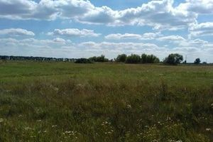 Продается земельный участок 190 соток в Харьковской области