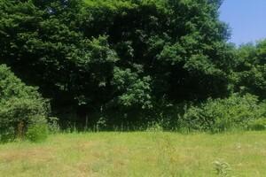 Продается земельный участок 6.22 соток в Тернопольской области