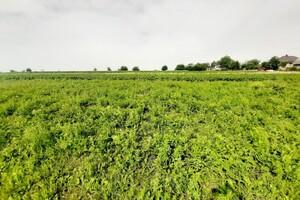 Продается земельный участок 25 соток в Тернопольской области