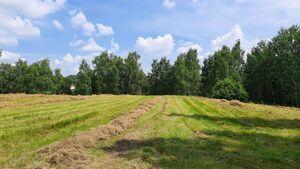 Продается земельный участок 23.7 соток в Киевской области