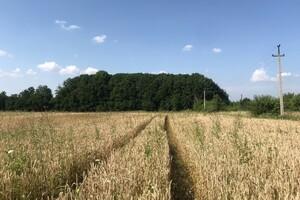 Здається в оренду земельна ділянка 25 соток у Вінницькій області