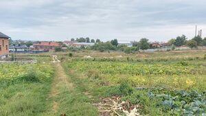 Продается земельный участок 14 соток в Тернопольской области