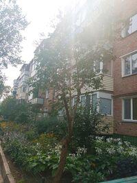 Продается 3-комнатная квартира 59 кв. м в Черкассах