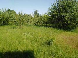 Продается земельный участок 38 соток в Киевской области