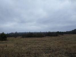 Сдается в аренду земельный участок 197 соток в Черниговской области
