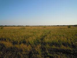 Сдается в аренду земельный участок 370 соток в Закарпатской области