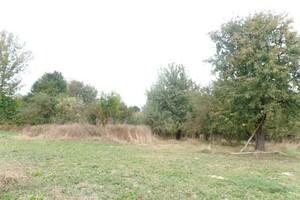 Продается земельный участок 61 соток в Винницкой области