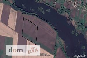 Куплю землю сельскохозяйственного назначения в Ильинцах без посредников