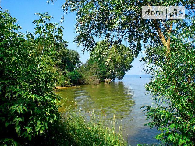 Снять шлюху вышгород киевская область