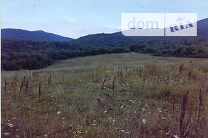 аренда земли в крыму - фото 8