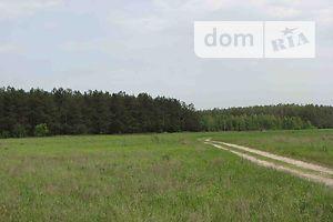Сниму землю сельскохозяйственного назначения долгосрочно в Киевской области