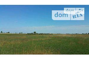 Земля сельскохозяйственного назначения без посредников Киевской области