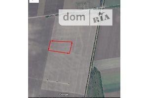 Земля сельскохозяйственного назначения без посредников Николаевской области