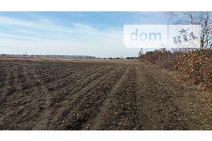 Куплю землю сельскохозяйственного назначения в Липовце без посредников