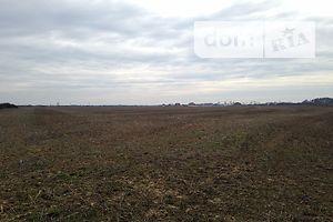 Продажа и аренда земли сельскохозяйственного назначения