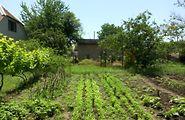 Купить землю под застройку в Одесской области