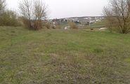 Купить землю сельскохозяйственного назначения в Тернопольской области