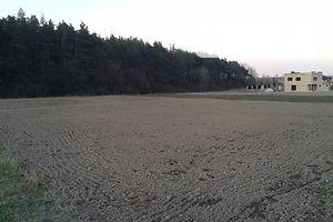 Земля сельскохозяйственного назначения без посредников Волынской области