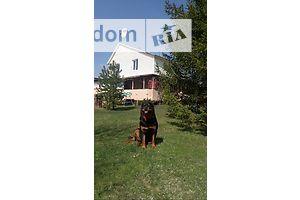 Сниму дачу посуточно в Донецкой области