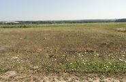 Земля сельскохозяйственного назначения без посредников Винницкой области