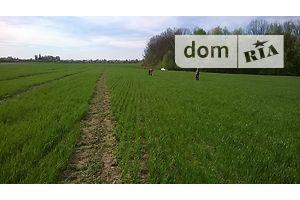 Сниму земельный участок долгосрочно в Винницкой области