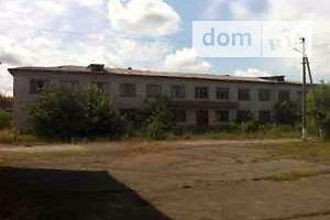 Недвижимость в Радомышле