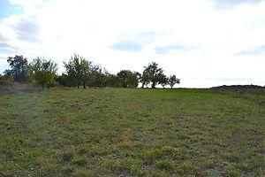 Купити земельну ділянку сільгосппризначення