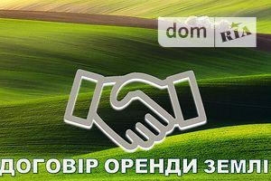 Сниму земельный участок долгосрочно в Хмельницкой области